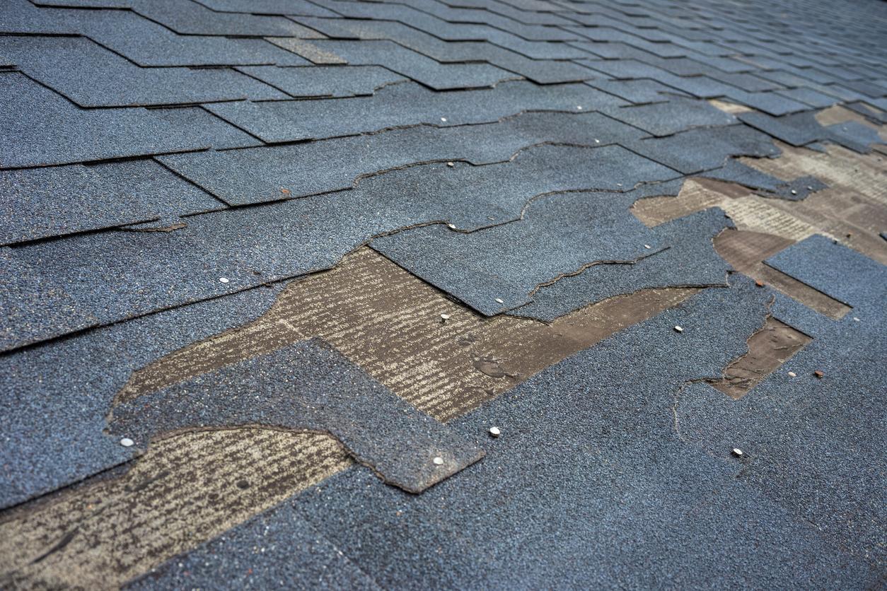 roof repair contractors in Sherman TX