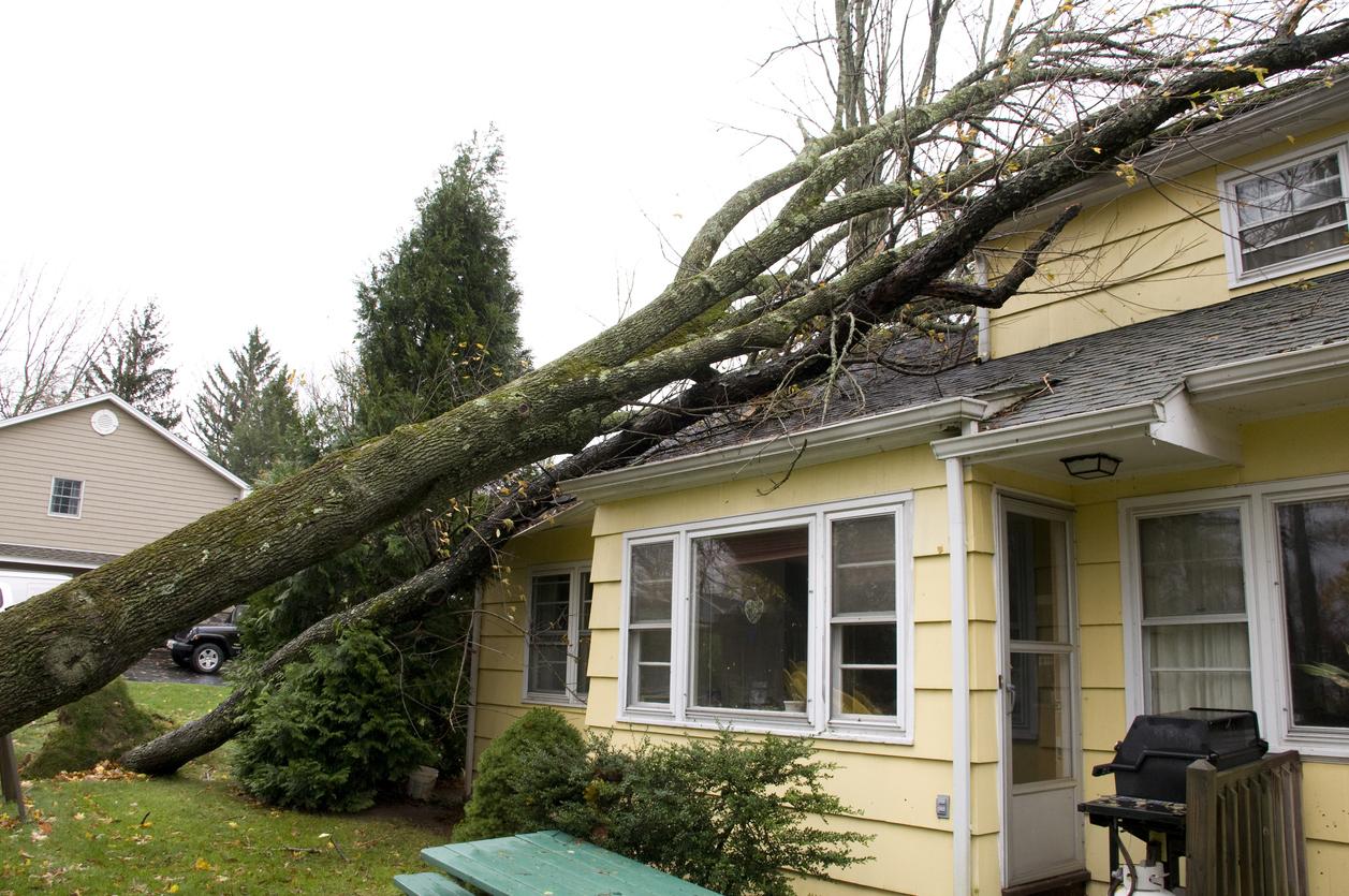 roof storm damage repair in Sherman TX